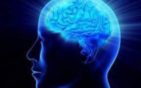 Приятный способ остановить разрушение мозга