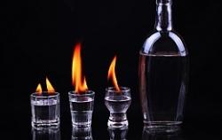 Пиво и водка — любимые горячительные напитки россиян
