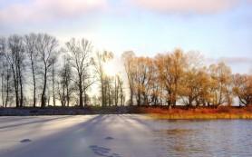Человек реагирует на смену времен года, но сезонной депрессии можно избежать — медики