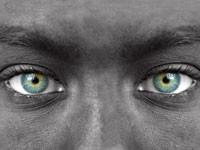 Обнаружены нейроны, реагирующие на прямой взгляд в глаза