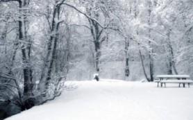 Чтобы избавиться от зимней депрессии, нужно подсвечивать мозг