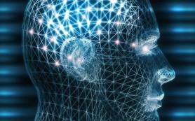 Неврологи доказали, что ультразвук можно настроить для стимуляции разных ощущений