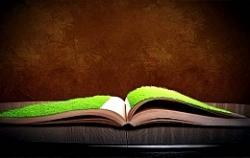 В Великобритании разработана книга, чтение которой облегчает проявления депрессии