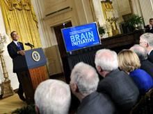 Штаты запускают масштабный госпроект изучения головного мозга