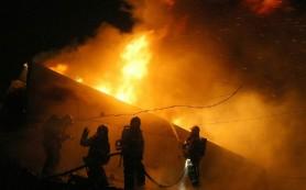 При пожаре погибли 36 пациентов психбольницы