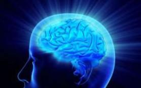Протез может восстановить память человека
