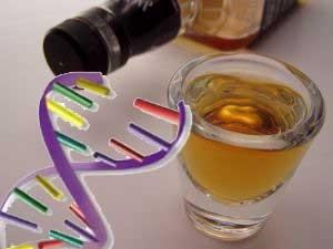 У 11% россиян найдены гены, защищающие от алкоголизма
