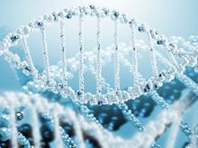 Стволовыми клетками научились лечить ДЦП