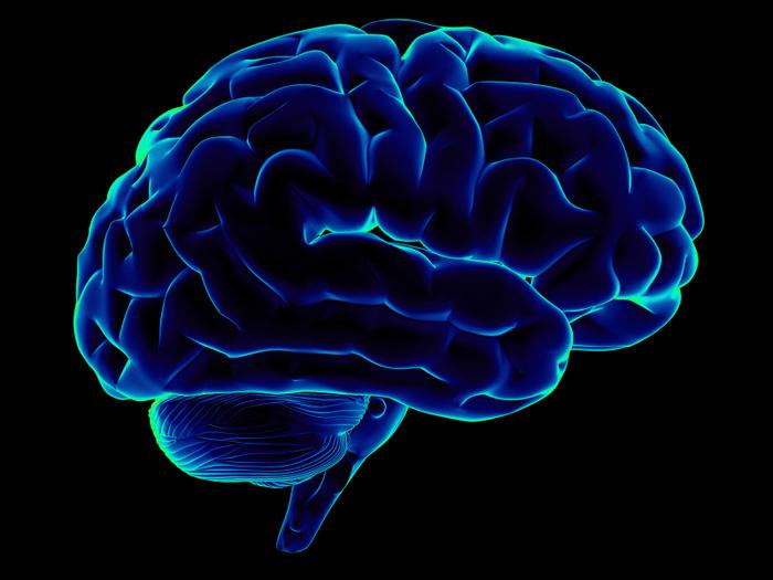 Причиной шизофрении являются «генетические паразиты» в клетках мозга