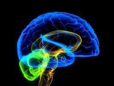 При травме нарушается способность мозга к синхронизации