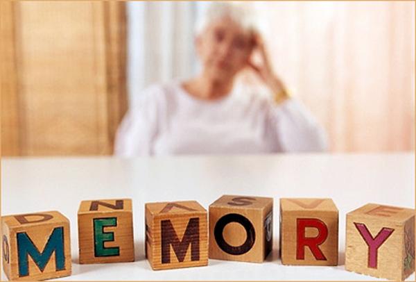 Активность клеток мозга регулирует уровень белка, связанного с болезнью Альцгеймера