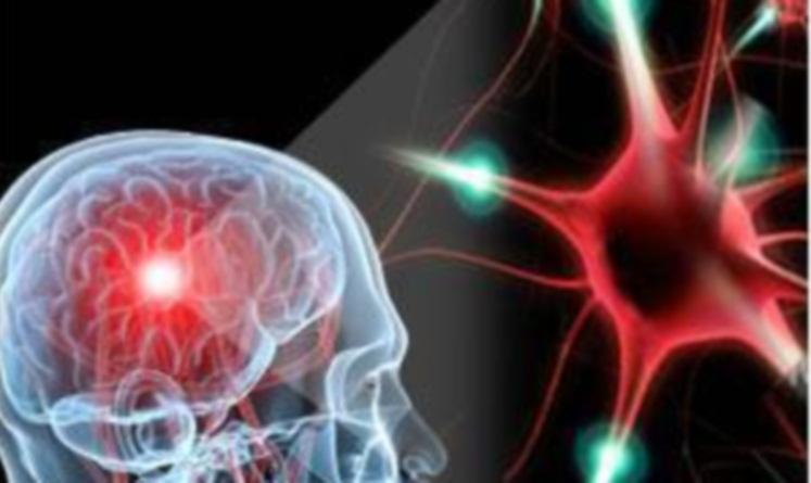 Рассеянный склероз, возможно, будут подсвечивать специальными молекулами