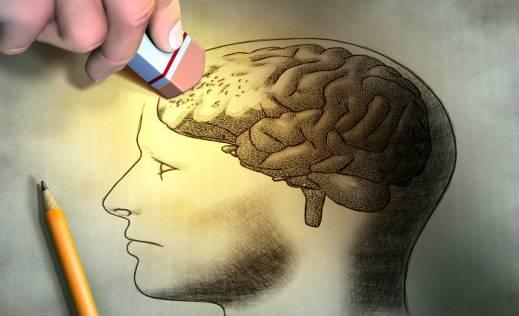 Новые клетки мозга стирают ранние воспоминания