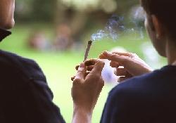 Доказано: марихуана вызывает бесплодие у мужчин