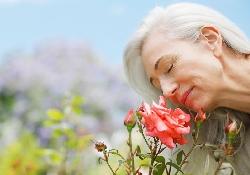 Обоняние и зрение помогают «поймать» Альцгеймера