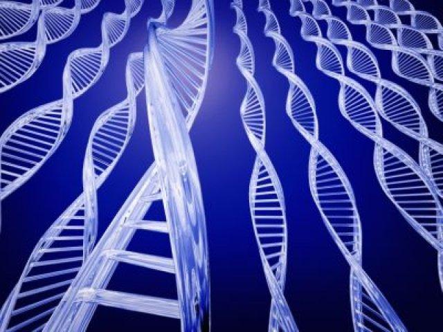 Реакция на стресс обусловлена генетикой