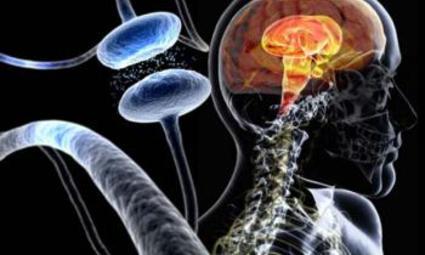 Исследователи развенчали миф о болезни Паркинсона