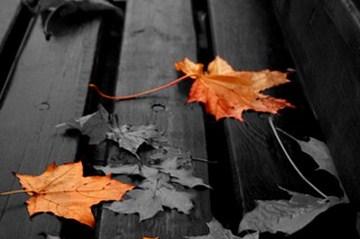 Осенняя антистрессовая программа: советы специалистов