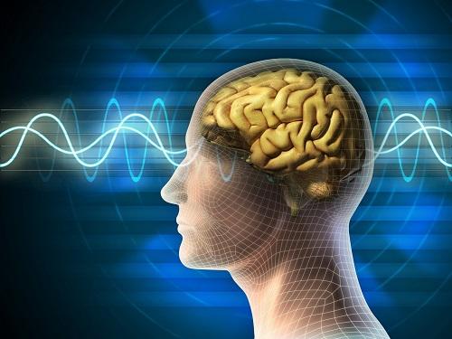 Йогурты стимулируют мозговую деятельность и влияют на настроение человека