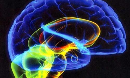 В Томске разрабатывают методы персонализированной терапии психических расстройств