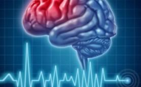 Ежегодно 29 октября специалисты всего мира стараются привлечь внимание общественности к проблеме инсульта