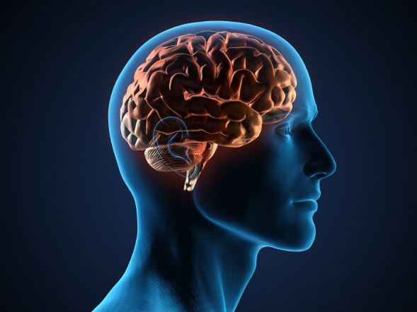 Исследователи нашли лекарство, которое сохранит трезвость ума в старости