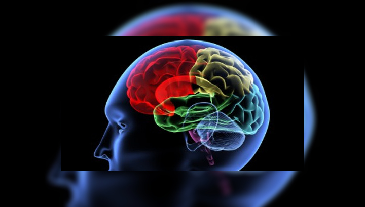 Главные причины ослабевания памяти