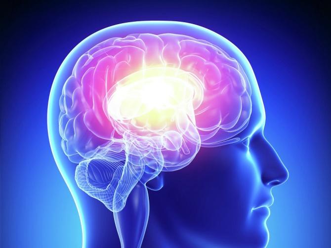 Для нормальной мозговой активности ученые советуют употреблять горячий шоколад