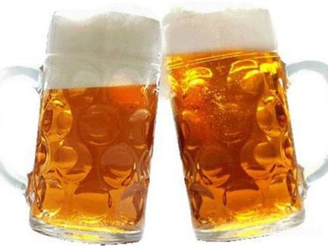 Как пиво разрушает мозг