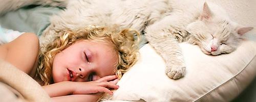 Значение сна и борьба с бессонницей