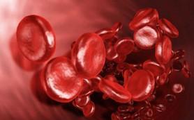 Какие продукты разжижают кровь