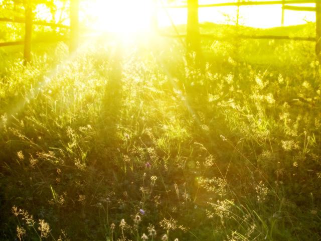 Солнце снижает кровяное давление