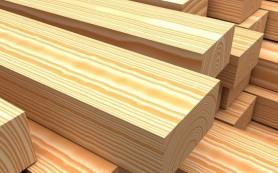 Древесина — как правильно хранить материал