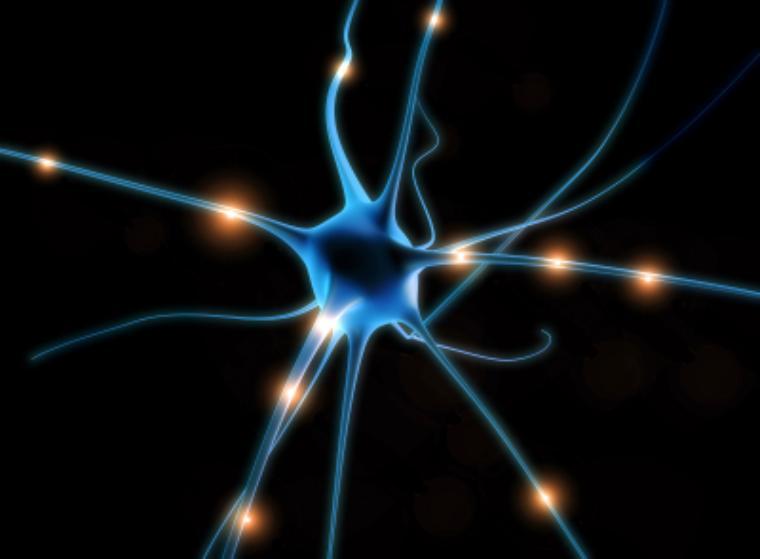 Ночная работа приводит к смерти клеток мозга