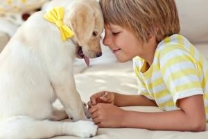 Исследование: Собаки спасут детей от тревожных расстройств