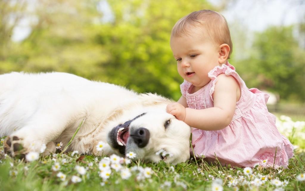 Познание красоты детьми с аутизмом