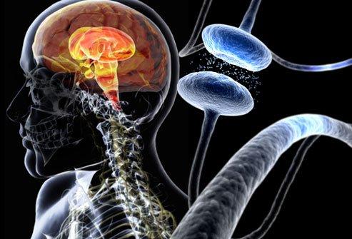 Уровень мочевой кислоты в организме обратно коррелирует с риском развития болезни Паркинсона