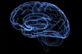 Что во благо для работы мозга, а что в ущерб?