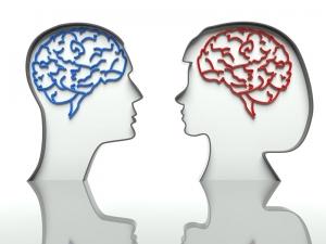 Ученые: мозг женщины работает эффективнее мужского