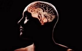 Природа шизофрении – загадка века