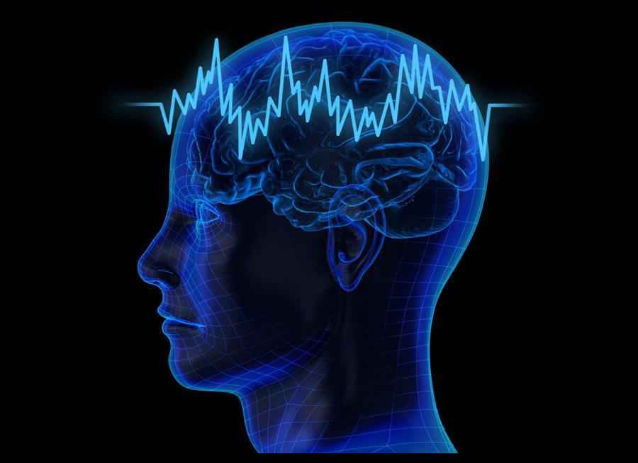 По взгляду можно судить о мозге человека