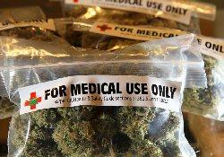 Марихуана вместо метадона: новое в лечении опиоидной наркомании