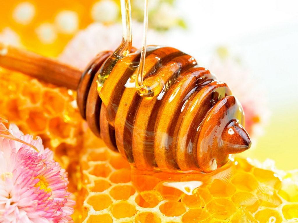 Мед улучшает память и снижает уровень тревожности на работе