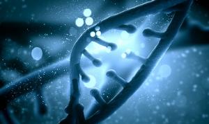 Ученые: зависимость от марихуаны обусловлена наследственностью и генами