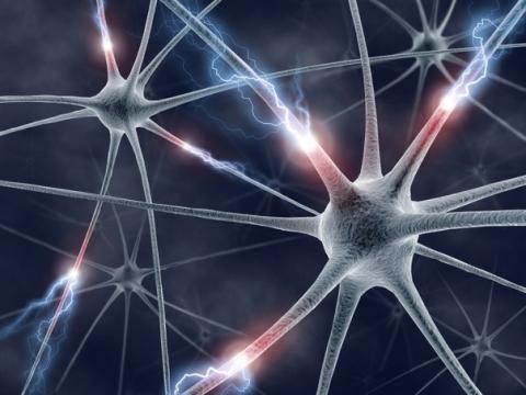В США рекомендован к регистрации экспериментальный препарат для терапии паркинсонического психоза