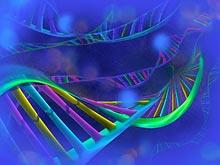 Ученые обнаружили новый ген, связанный с рассеянным склерозом