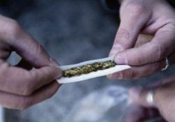 Резкий рост аварийности на дорогах – следствие легализации марихуаны