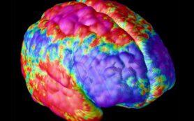 Мозг пациентов с шизофренией способен к восстановлению