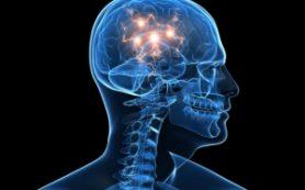 Мозг человека теряет сознание каждую секунд – ученые