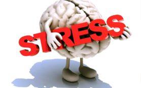Уборка по дому — эффективное средство от стресса